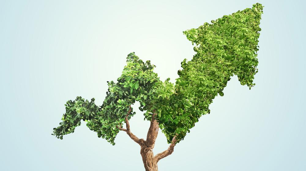 What is Sustainable Investing
